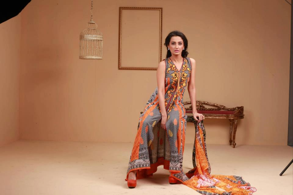 2013 Ayesha Somaya Lawn Dress