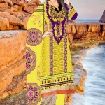 Dawood Zam Zam Lawn Volume-3 Collection 2013 For Women (3)