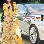 Dawood Zam Zam Lawn Volume-3 Collection 2013 For Women (4)