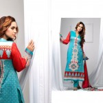 Libas Embroidered Collection (3)