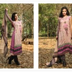 Sahil Swiss Voile Collection (4)